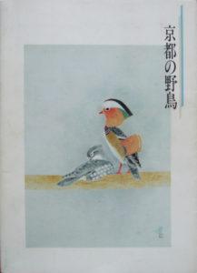京都の野鳥